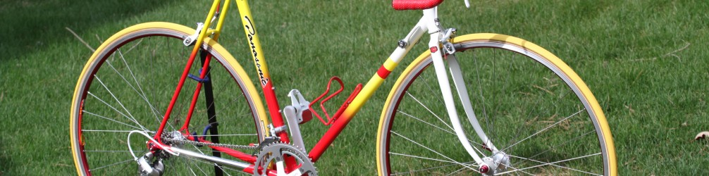 1989 Panasonic PICS Team Custom – Naperville Cyclery Frame